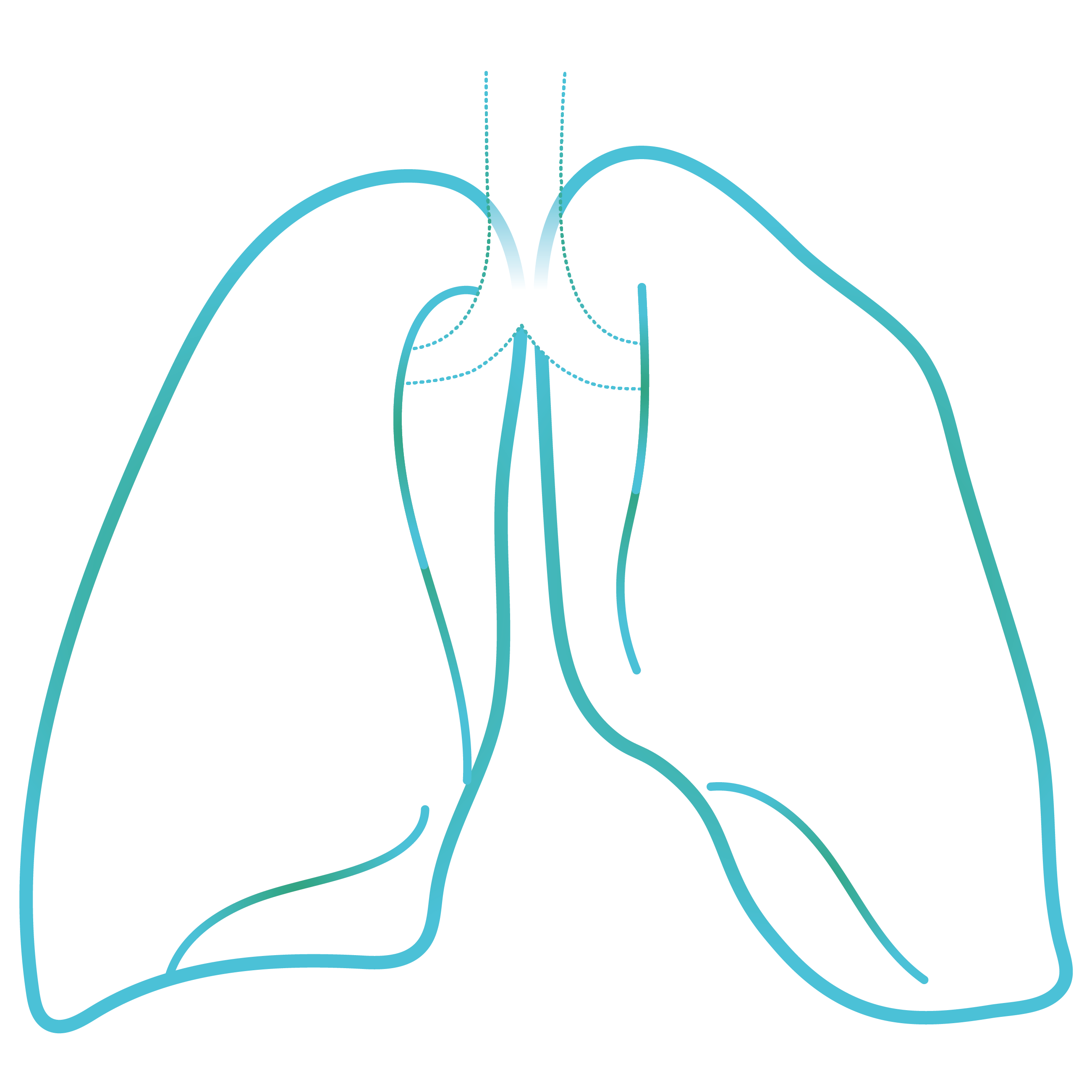 lung@4x